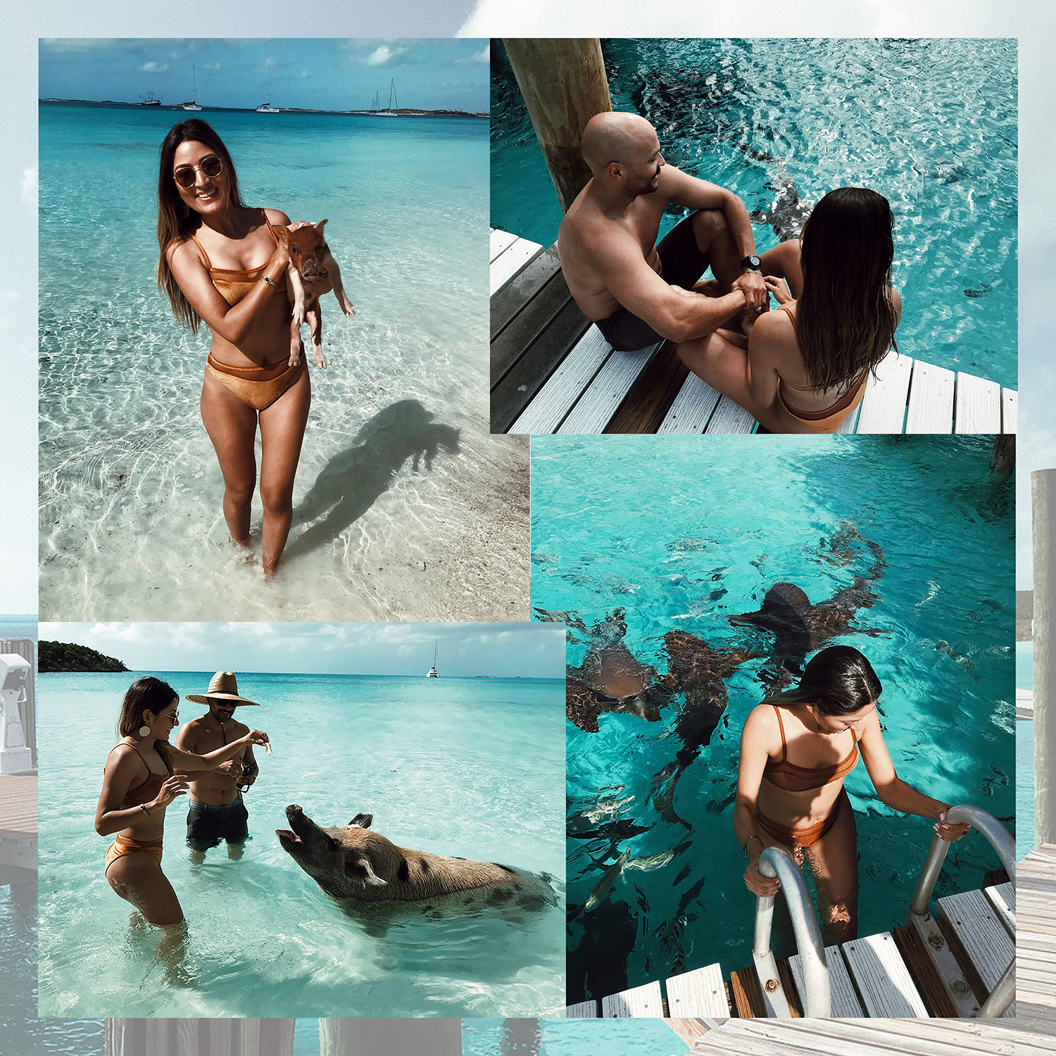 swimming with nurse sharks, The Bahamas, bahamas, island, vacation, trip, travel, birthday, melrodstyle, la blogger, travel blogger, hispanic blogger, mexican blogger, latina blogger, lifestyle blogger, lifestyle, swimming with pigs, swimming pigs,